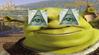 basedgodshrek Avatar