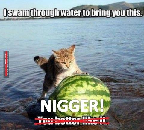 9fag better get it right!. no need. swam _ 1_ r__ water tours ll Lati, H Italian I II! II 2' lat lolsaur ._ cat watermelon n