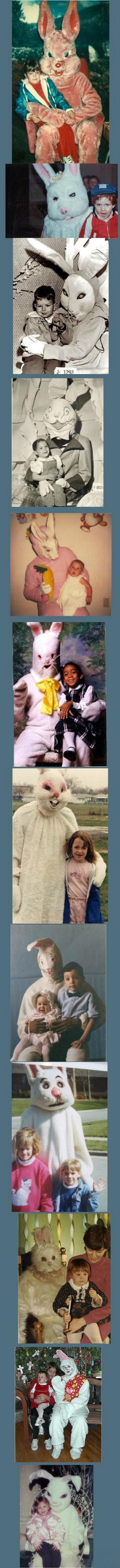 Adorable bunnies . .. 2 spooky for me Scary Bunnies