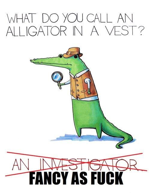 Alligator. . alligator vest fancy investigator