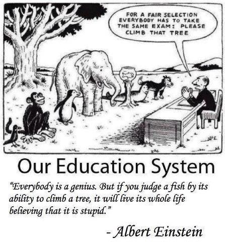 American Education System. . an in -nut: THE Inn: Inn: Ianus: is avenida ahrd , 53; its aih' iitt to cli' a Mee, it its wiiwii life Mat it is stupid. dlt Aubert American Education System an in -nut: THE Inn: Ianus: is avenida ahrd 53; its aih' iitt to cli' a Mee it wiiwii life Mat stupid dlt Aubert