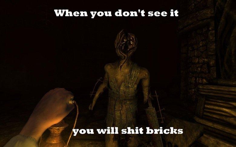 Amnesia. . when you don' t see it you will shit bricks amnesia shit bricks