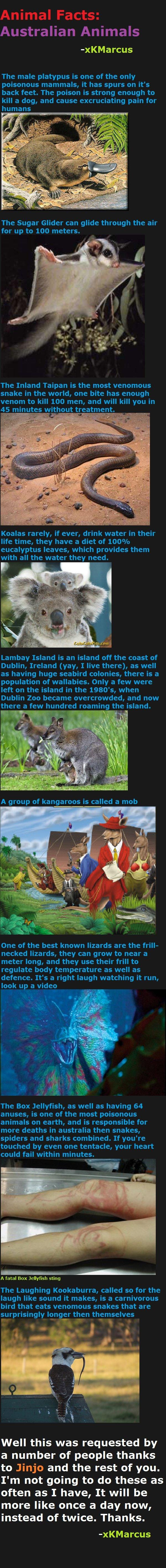 Animal Facts: Australian Animals. Animal Facts Prehistoric Animals 2 - /funny_pictures/2261070/Animal+Facts+Prehistori... . Animal Facts: Prehistoric Animals -  animal facts