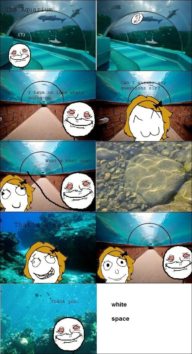 At the aquarium. [[THIS IS A REPOST]] Glory goes too : /channel/stoner-humor/At+the+Aquarium/oDzzDbQ/. aquarium Stoned Rock sea Life