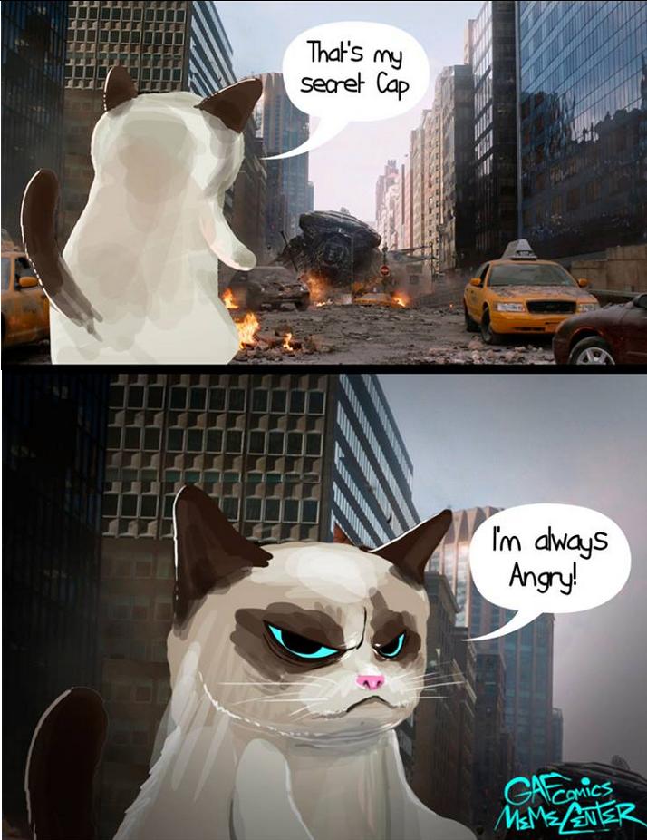 avenger cat. . avenger cat