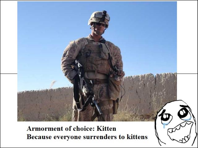 eat it. . chnace: Kitten Because everyone surrenders tn kittens eat it chnace: Kitten Because everyone surrenders tn kittens
