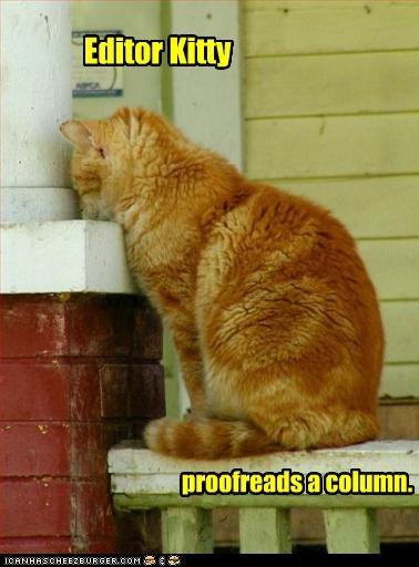 editor kitty. loolz.. I arr. kitty