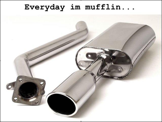 everyday im mufflin. everyday im mufflin. Everyday mufflin. . . everyday im muff