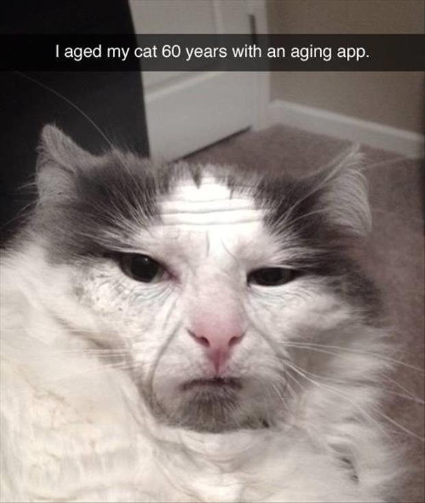 Ewwwwww oh god no XDD. Nee. I aged my years with an aging app.. looks like feelguy. oh god why