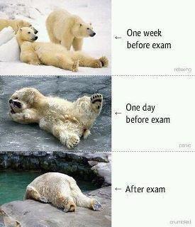 Exam. . before Exam 4- After E: -cam Exam