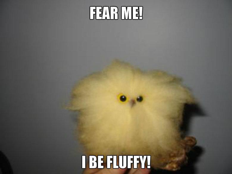 I Be Fluffy!. .. dinner fluffy fear