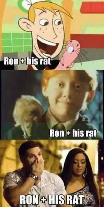 I like rats. . lain: his rah I like rats lain: his rah