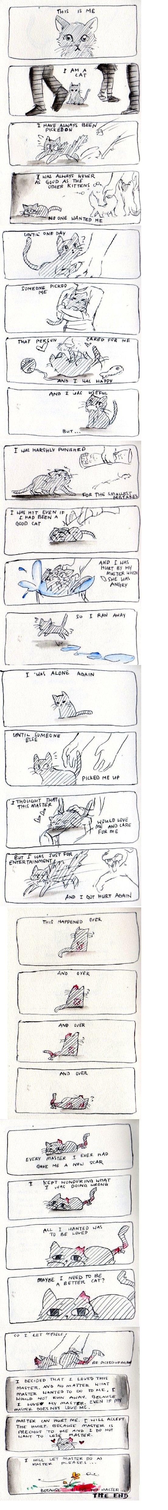 i'm a cat. credit: .. Terrible day for rain... i'm a cat credit: Terrible day for rain