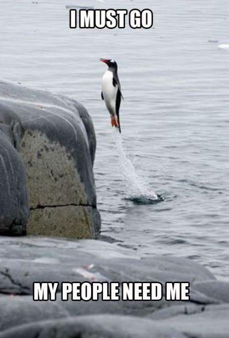 I must go!. . umn ME I must go! umn ME