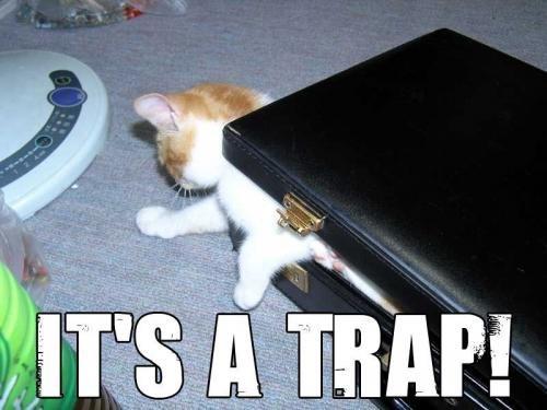 i wad trapped. its a trap!. Traps lolcatz
