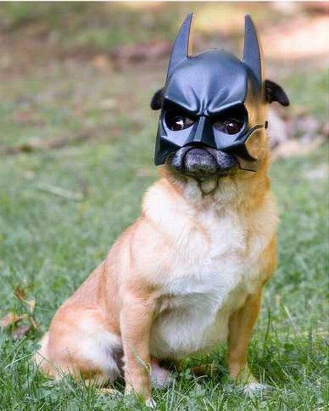 I AM THE BATMAN. .. NO I AM THE BATMAN kill kyle