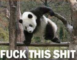 im out. . Panda