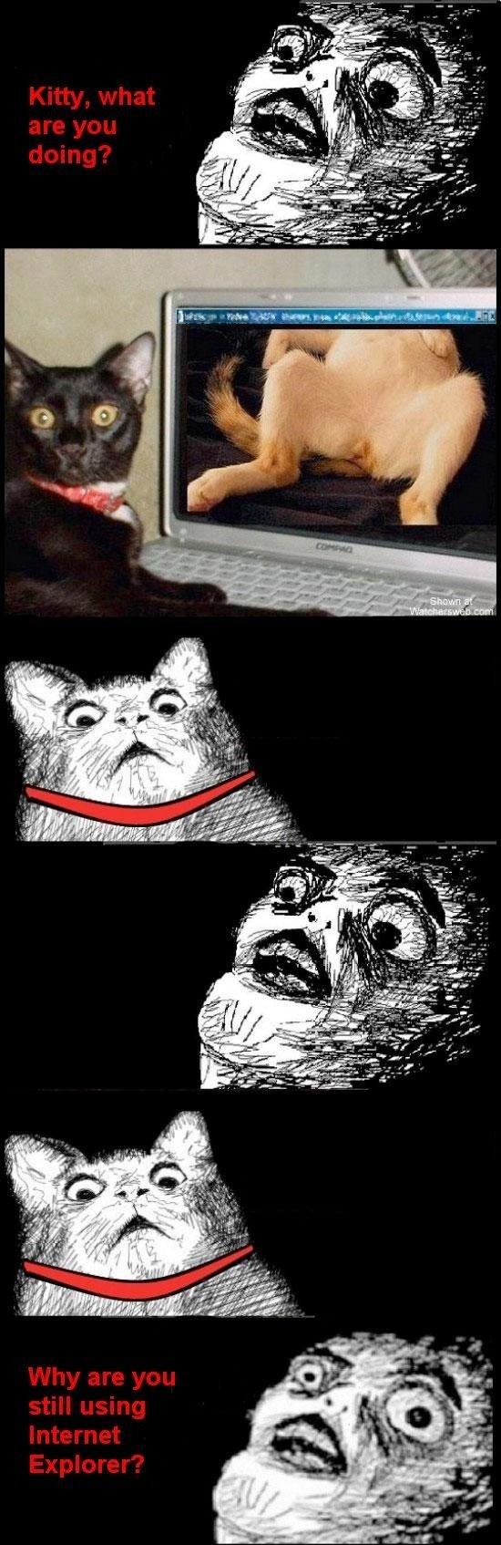 Internut Explorer. Cat porn... on Internet Explorer. cat meme funny Porn internet Explorer