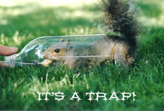 it's a trap!. . it's a trap!