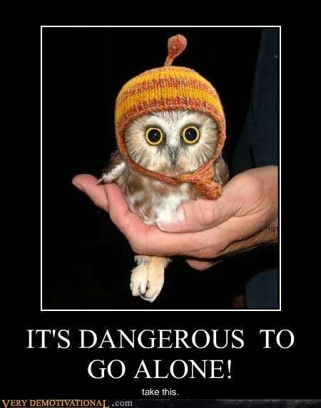 It`s Dangerous. . IT' S DANGEROUS 'TC) GO ALONE! take INS Owl Dangerous al