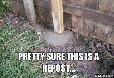 its a repost. get it?. addr its a repost get it? addr