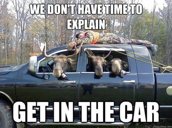 Its Hunting Season. .. Looks like my deer old friend is in for a rough ride... Its Hunting Season Looks like my deer old friend is in for a rough ride