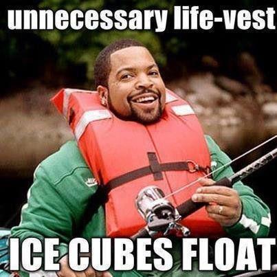 Its Science. . vest Its Science vest