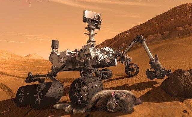 Mars. Get it?.. nope... Mars Get it? nope