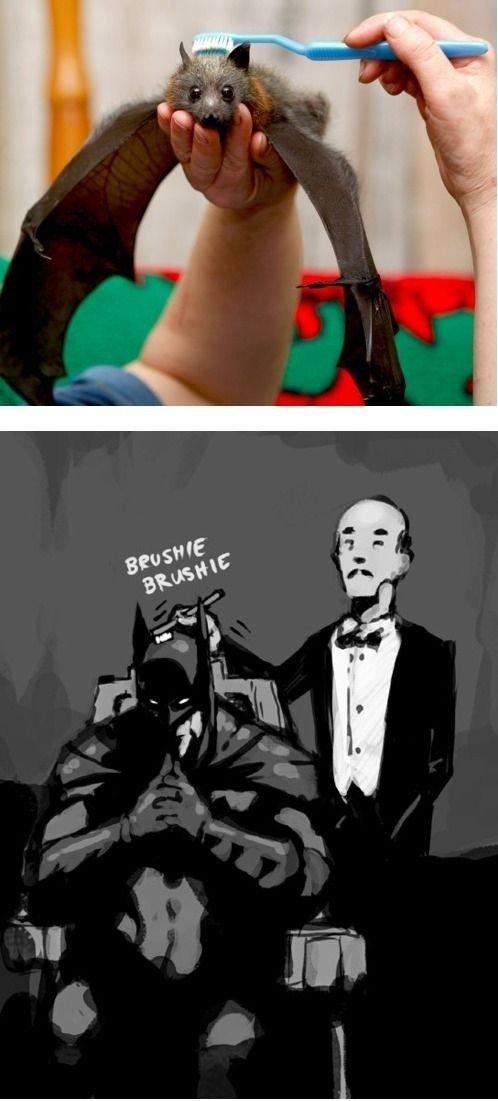 Master Wayne. . Master Wayne