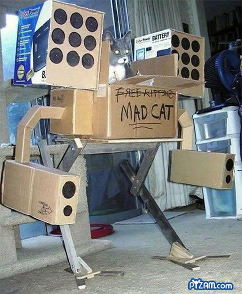 Mech-kitty. . Mech kitty Robot cat