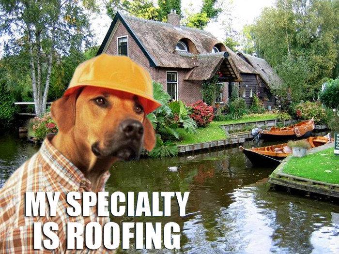 Meet Garry, our local builder. he goood. Meet Garry our local builder he goood