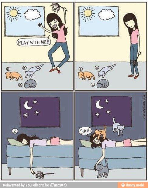 Meow :3. Source > www.catversushuman.com/. Meow :3 Source > www catversushuman com/