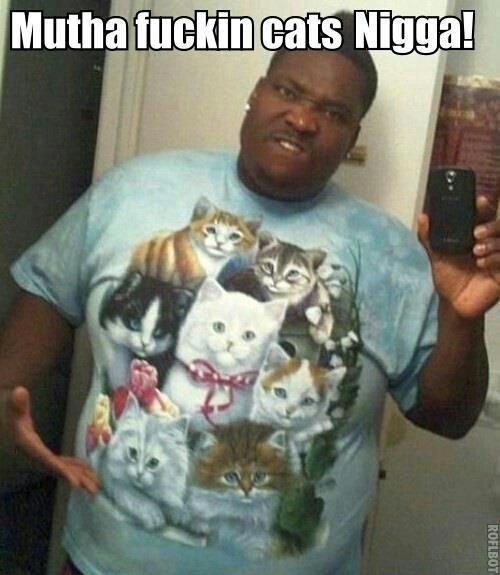 Meow Mutherfucka. . eats ' Meow Mutherfucka eats '