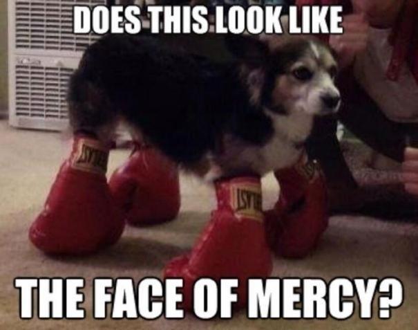 Mercy. . THE FACE IIN' MERCY? Mercy THE FACE IIN' MERCY?