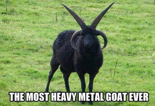 Metal as Fck. . Metal as Fck