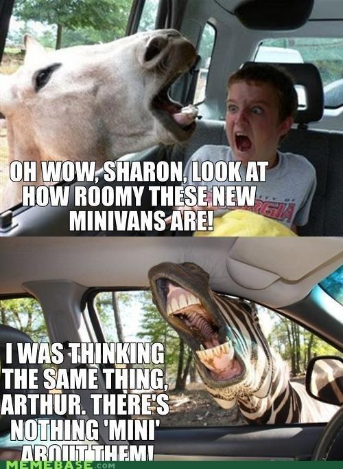 Mini Van Horses. check the tags. Mini Van Horses check the tags