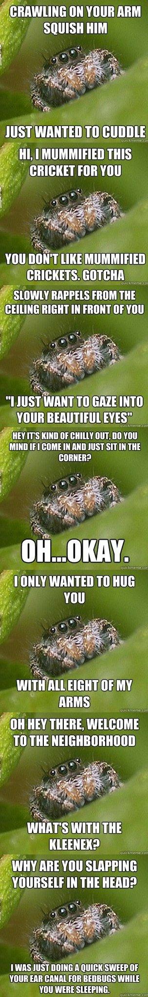 Misunderstood Spider. . an mun ml i HIM Just wanna TO : vuu [IKE r::, i) ii, tsim, r lolrus mun THE ll mii' TO can mu Ens? IT' S nanu Elf um, M 'mu a' i, mun If misunderstood spider