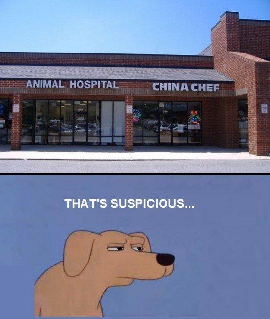 MMM. . THAT' S SUSPICIOUS... MMM THAT' S SUSPICIOUS