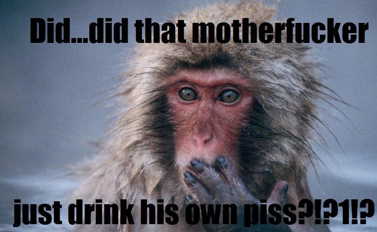 monkey disaproval. .. Feels good man.