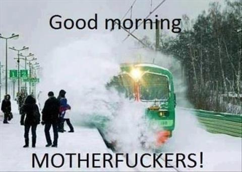Morning!. . Morning!