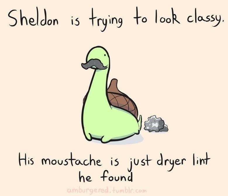 Moustache. . Hia jisl- dryer litel- he -Pound Moustache Hia jisl- dryer litel- he -Pound