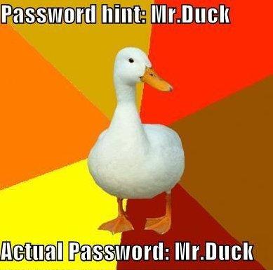 Mr duck. . Mr duck
