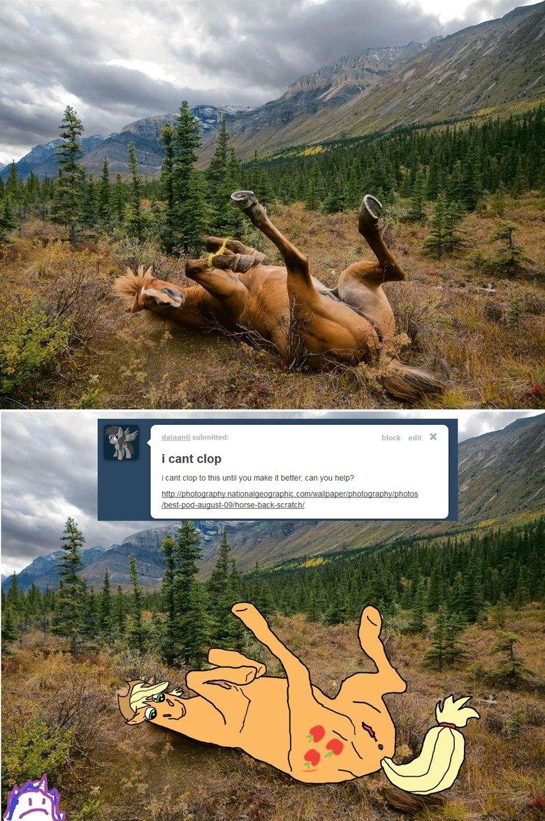 MSPAINTPONIES Tumblr ask/sumbission Blog. . MLP fim pony ponies Applejack