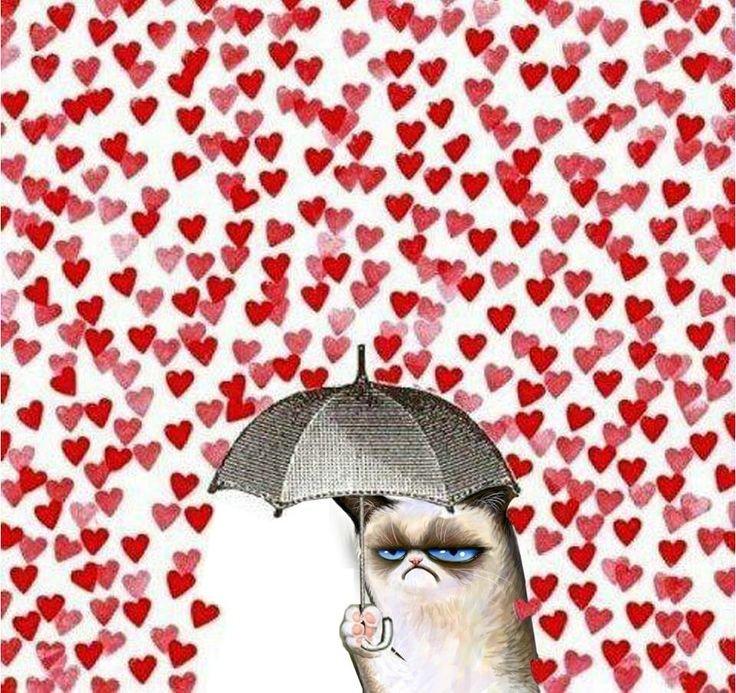 umbrella. . umbrella