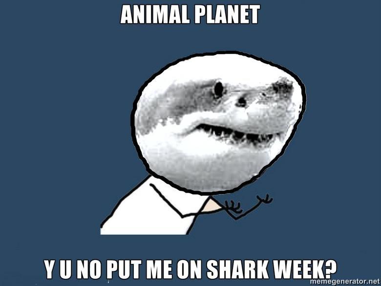 Y Animal Planet. shark week!!!!!!!!!!!!!!!!!. II tlo HIT ME ON SHARK WEEK?. but its shark week!! y u no Shark week