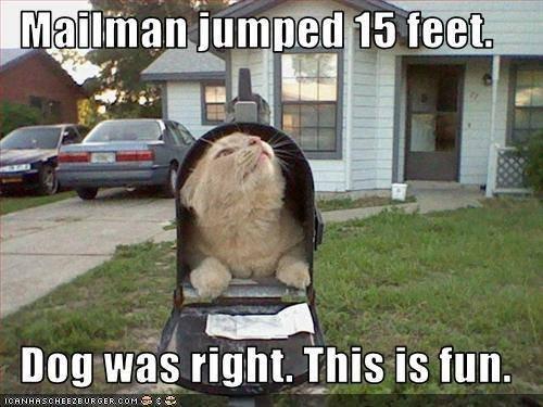 You've got mail. . mailmen