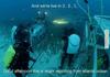 Ocean News