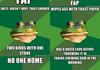 Bachelor frog comp