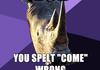 <b>Sexually</b> Oblivious Rhino