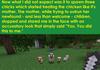 Minecraft chickens